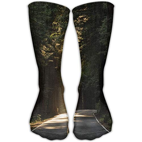 DLing Unisex Classics Socken Scenic Sequoia Sunrays Travel Trees Woods Athletic Stockings Lange Socke Einheitsgröße 30 cm