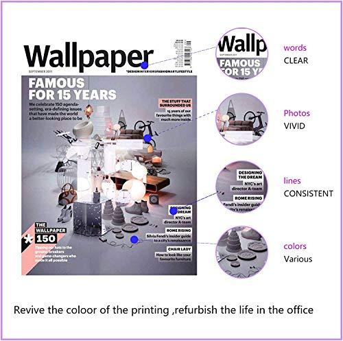 NineLeaf Cartuchos de tinta remanufacturados 304 XL 304XL con chip actualizado compatible con impresoras HP Deskjet 3720 3730 3750 2620 2630 2632 Envy 5010 5020 5030 (1 negro)