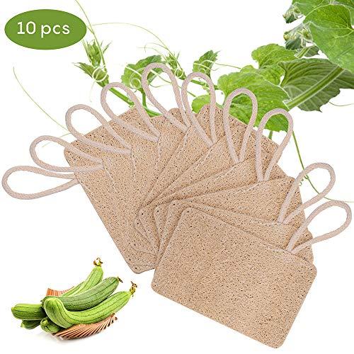 10 Piezas Loofah Esponja, Loofah Para Lavar Platos, Natural Esponja Estropajo, para Cocina, Biodegradable, Cero Residuos(7*11 cm)