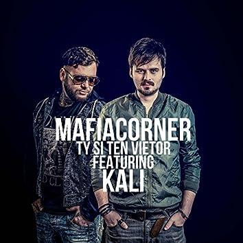 Ty si ten Vietor (feat. Kali) - Single