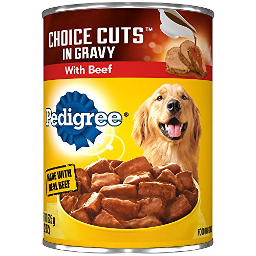 PEDIGREE CHOICE CUTS in Gravy Adult Canned Wet Dog Food with Beef, (12) 22 oz. Cans