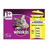 Whiskas Casserole Comida Húmeda para Gatos Adultos Selección Aves, Multipack (4 cajas x 12 sobres x 85g)