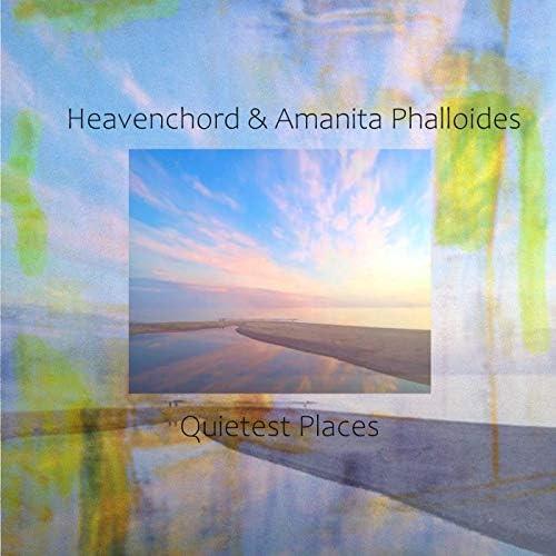Heavenchord & Amanita Phalloides