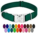 Country Brook Design - Vibrant 26 Color Selection - Premium Nylon Dog Collar with Metal Buckle (Large, 1 Inch Wide, Green)
