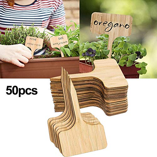 WHK Pflanzenetikett,50 Stück T-Typ Pflanze Kleine Etiketten,DIY Bambus Pflanzenetiketten Gartenmarkierungen Mini-Tafel