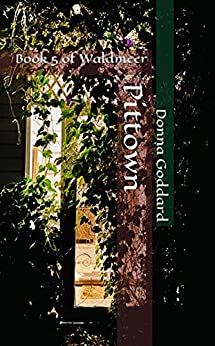 Pittown: Remarkably Ordinary (Waldmeer Book 5) by [Donna Goddard]