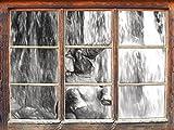 Stil.Zeit Babyelefant am Wasserfall Kunst Kohle Effekt Fenster im 3D-Look, Wand- oder Türaufkleber Format: 92x62cm, Wandsticker, Wandtattoo, Wanddekoration