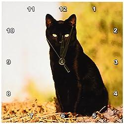 3dRose Black Cat Wall Clock, 10 by 10-Inch