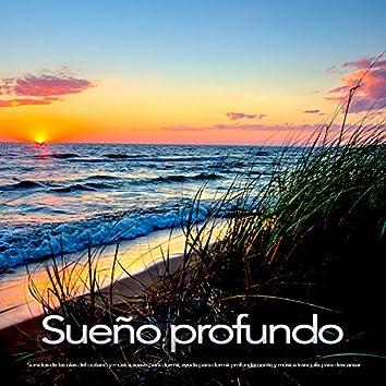 Sueño profundo: Sonidos de las olas del océano y música suave para dormir, ayuda para dormir profundamente y música tranquila para descansar