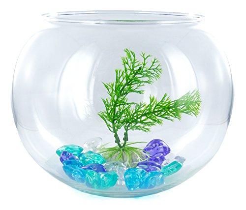 Nick and Ben Aquarium-Set 2,8 l inkl. Deko-Kies und Pflanze Goldfisch-Glas Zubehör Fisch-Becken Glas-Becken Glas-Aquarium