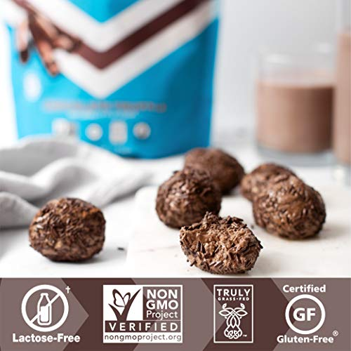 Iconic Protein Powder, Chocolate Truffle, 1 Lb (17 Serving) | Sugar Free, Low Carb Protein Shake | 20g Grass Fed Whey Protein & Casein | Lactose Free, Gluten Free, Kosher, Non-GMO | Keto Friendly 3