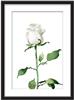 Best black and white drawn rose Reviews