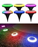 BRIGHTRIGHT - Colorize Colorful Pathway Solar Light (6 Lights) Decorative Weatherproof Auto On/Off Outdoor Lights - Decorate Your Garden, Landscape, Patio, Pool, Yard with Ultra-Bright LED Light