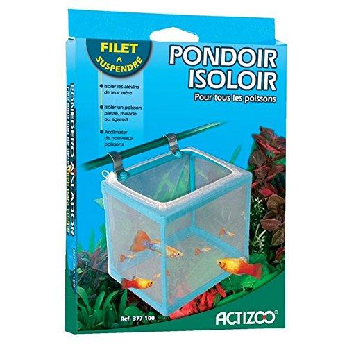 Zolux Pondoir Isoloir pour Aquarium