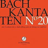 Bach Kantaten 20