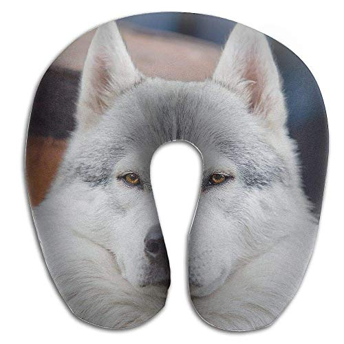 Rghkjlp Neck Pillow Dog Face Close Up Travel U-Shaped Pillow Soft Memory Neck Support for Train Airplane Sleeping