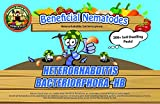 Beneficial Nematodes