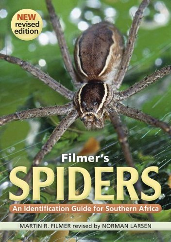 Filmer's Spiders: An Identification Guide for Southern Africa (English Edition)
