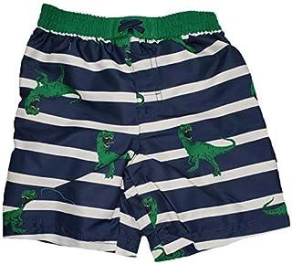 Toddler Boys T-Rex Dinosaurs on Blue Cove Stripes Swim Short Trunk - 3T [並行輸入品]