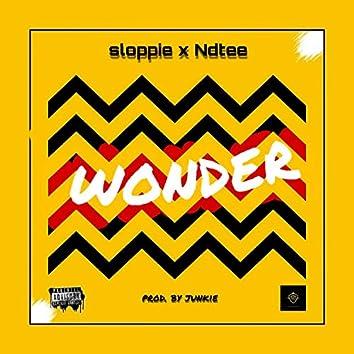 Wonder (feat. Ndtee)