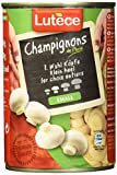 Holco Lutece Champignon I Wahl, 6er Pack (6 x 230 g)