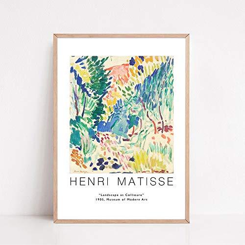 Nordic Matisse carteles e impresiones de rostro humano abstracto colorido planta lienzo cuadros de arte pinturas de lienzo sin marco D 40x60cm