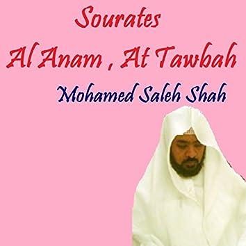 Sourates Al Anam , At Tawbah (Quran)