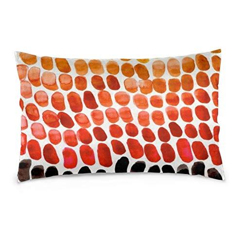 Lesif Fundas de cojín de terciopelo rectangulares fundas de almohada suaves decorativas para sofá, dormitorio, coche, 40,6 x 60,9 cm (patrones naturales de degradado rojo, naranja, amarillo y rojo)