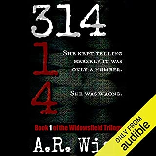 314 audiobook cover art