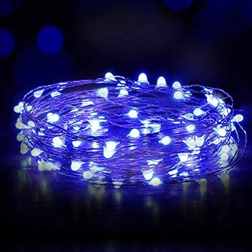 Lodevin Fairy Lights USB, Ariceleo 5M 16 Ft. USB Powered Led Fairy Lights, 50 LEDs USB Plug in String Lights Firefly Lights for Bedroom, Chirstmas, Xmas, Computer (Blue) (Color : Blue)