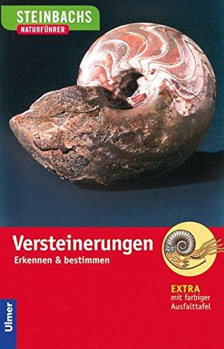 Steinbachs Naturführer Versteinerungen: Erkennen und bestimmen