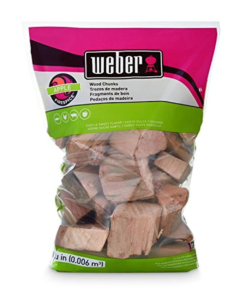 Weber 17139 Apple Wood Chunks, 350 cu. in. (0.006 Cubic Meter)