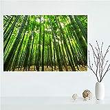 Yiwuyishi Lienzo de bambú Personalizado Pintura Cartel Minimalista decoración del hogar Cartel de Arte de Pared para Estudio de Sala de Estar 50x70 cm P-1846