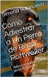 Cómo Adiestrar a Un Perro de Raza Rottweiler : Adiestramiento Fácil de un Rottweiler