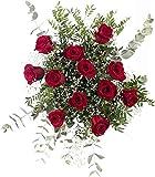 12 Rosas Rojas y TIJERAS DE REGALO! | Ramo de Flores Naturales a Domicilio Frescas San Valentín | Entrega Gratis 24 horas