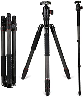 fotopro x go or