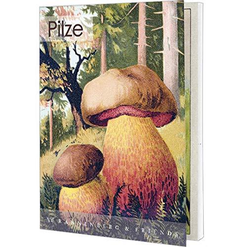 Postkartenbuch Pilze, Postkarte Ansichtskarte, Pilz, Herbst