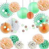 Easy Joy Decoration Papier Mariage Menthe Vert Peche Suspendre Deco Pompom Papier Fleur Boule Lanterne Chinoise pour Baby Shower Bapteme Anniversaire Chambre Salle Fete - 17pcs