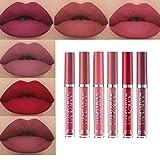 Matte Nude Liquid 6Pcs/Set Lipstick Velvety Long Lasting and Waterproof Makeup Set Non-Stick Cup Moisturizer Durable Lip Gloss kit (A)