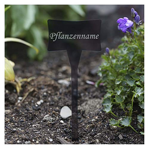 Bütic GmbH Étiquette pour plantes de jardin/herbes aromatiques, en verre acrylique transparent gris, grand choix de noms de plantes (version française non garantie)