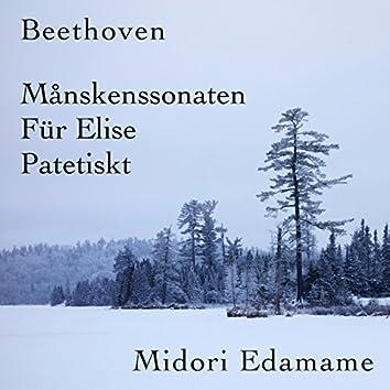Beethoven: Månskenssonaten / Für Elise / Patetiskt