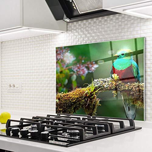 Horno para la cocina protector contra salpicaduras resistente al calor decoración guardia trasera proteger proteccion mural panel rasguño resistir Talla: 60x52cm-No:246