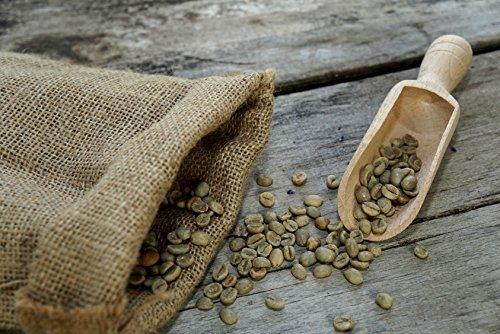 500 g Arabica Rohkaffee | Grüner Kaffee | roh | Spitzenkaffee | Kaffeebohnen |