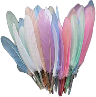 Pigeon Fleet 150 Pcs Light Colorful Artificial Goose Feathers for DIY Art Craft Party Decor, 3-6 inch