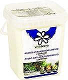 Vitaterra Abono Antiamarronamiento de Coníferas 1 kg, 27111