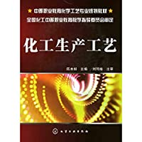 Chemical production processes(Chinese Edition)