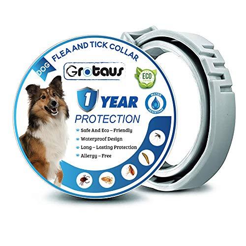 GROTAUS Collare antipulci e zecche per Cani, 12 Mesi, per Controllo delle zecche e delle pulci per Cani, Trattamento Naturale a Base di Erbe, Non tossico, Protezione Impermeabile e Regolabile