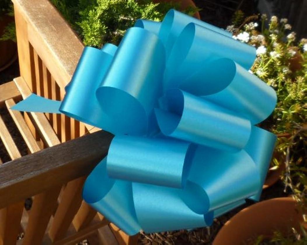 Turquoise Decorative Ribbon Pull Bows - 9
