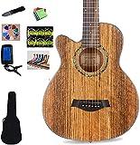 SLZFLSSHPK Guitarra acustica Guitarra Clasica Guitarra acústica Cutaway para Principiantes Guitarra acústica Guitarra clásica 6 Cuerdas de Acero Cutaway Dreadnought Kits para Principiantes de Guita