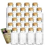 gouveo 24er Set runde Gewürzgläser 250 ml - Glasdose mit Korkverschluss - Korkengläser,...